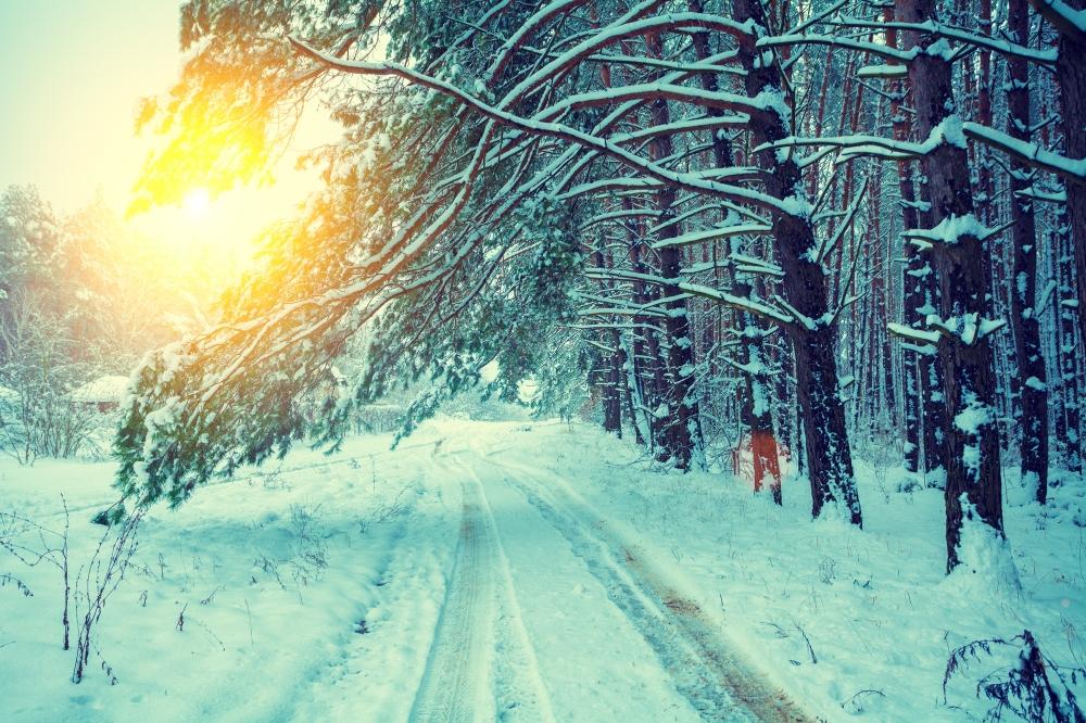 winter_shutterstock_350113271